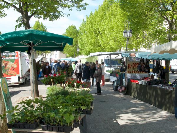 Aulnay Market, Sunday mornings